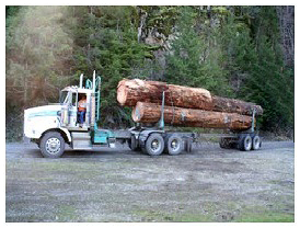 Kenworth Long Logger